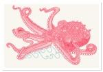Octopus, por Claire Sculy.