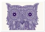Owl, por Claire Sculy.