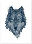 Wolf, por Claire Sculy.